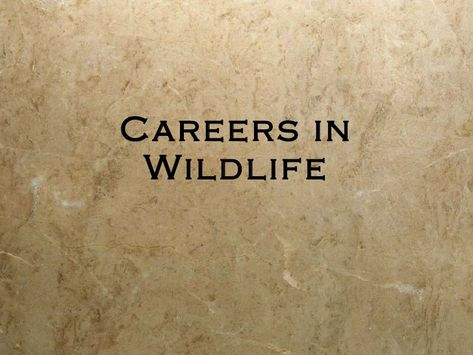 Zoologists And Wildlife Biologists Occupational Employment
