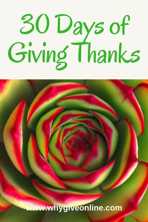 30 Days of Giving Thanks Don't just save giving thanks for November! Give thanks every day! Use these 30 ideas to inspire you to give thanks! #Giving #GiveThanks #Thanksgiving #Thankful