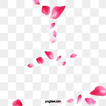 Floating Rose Petals Red Flying Floating Rose Petals Red Rose Petals Falling Petals Png Transparent Clipart Image And Psd File For Free Download Red Rose Petals Rose Petals Falling Flower Graphic