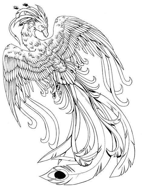 Image Result For Fawkes Harry Potter Coloring Page 2020 Cizim