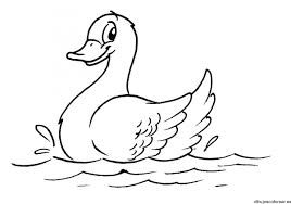 Pato Dibujo Buscar Con Google Bird Coloring Pages Animal Coloring Pages Decoupage Vintage