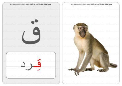 حرف كلمة صورة بطاقات الحروف الحيوانات 6 1