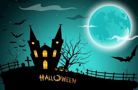 Halloween 4k Ultra Hd Wallpaper 4k Wallpaper Net Chauve Souris Halloween Halloween Photographie