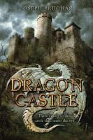 Young prince Rashko, aided by wise old Georgi, must channel the power of his ancestor, Pavol the great, and harness a magical dragon to face the evil Baron Temny after the foolish King and Queen go missing.