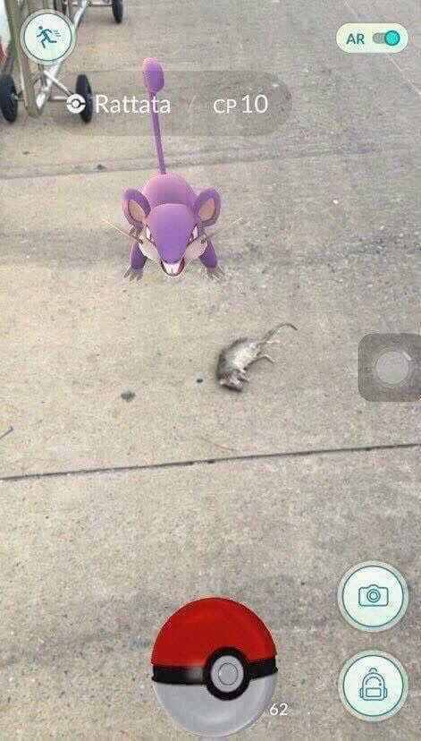 Check your surroundings often whilst playing Pokemon Go.