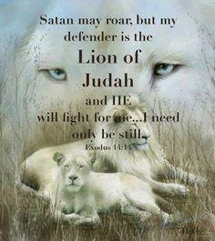 of Judah . Patrick& Day, prendi la tua sciarpa di seta d. Lion of Judah .,Lion of Judah .