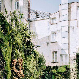Un Petit Coin De Verdure A Bordeaux Avec Images Bordeaux