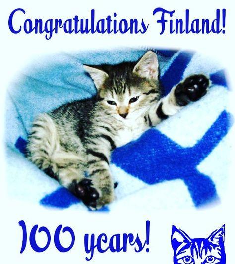 finland Finland celebrates 100 years...