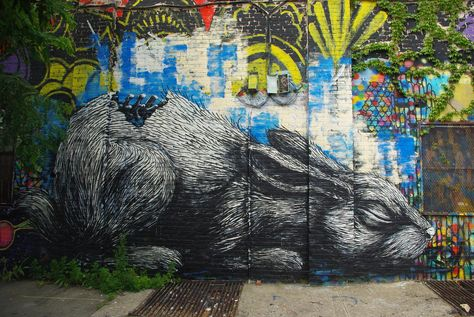 Best Art Street Art Images On Pinterest Street Artists - Clever free bird see graffiti spotted in chicago leads to a creative surprise