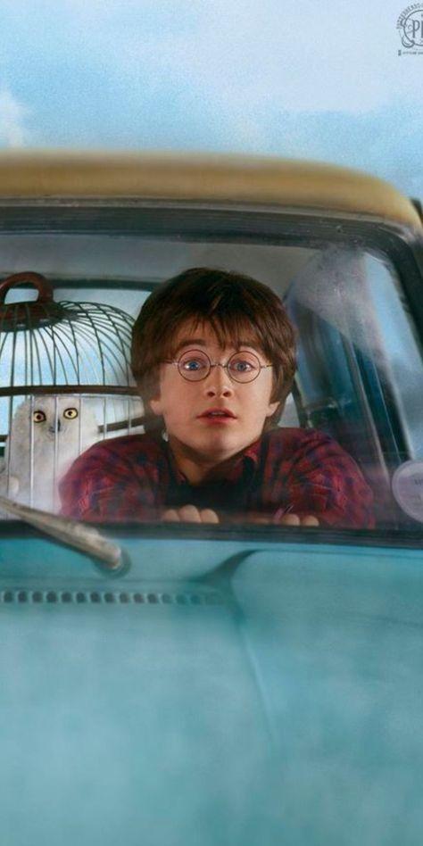 Harry auto voldor