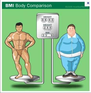rapporto peso muscolo e grasso