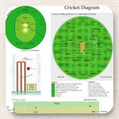 Cricket Position Field Pitch And Wicket Diagram Poster Zazzle Com In 2021 Wicket Custom Posters Cricket