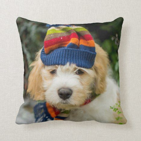 A Sweet Cavachon Puppy In A Winter Hat And Scarf Throw Pillow Zazzle Com Cavachon Puppies Winter Hats Cavachon