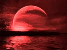 full strawberry moon | Hartford Street Zen Center | Issan-ji