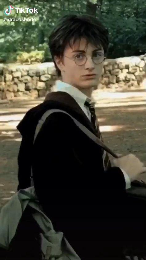 Harry Potter ✨❤️
