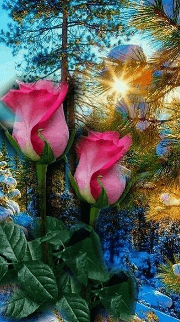 Animated Photo Animated Beto Photo Wallpaper Nature Flowers Beautiful Flowers Pictures Beautiful Flowers Wallpapers