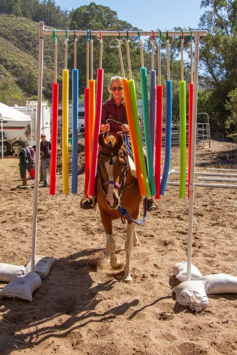 Fun with a Horse Trail Obstacle Course and Other Objectives of a Horse Campout Horse Arena, Horse Stables, Horse Exercises, Horse Treats, Horse Games, Horse Training Tips, Barrel Horse, The Ranch, Horseback Riding