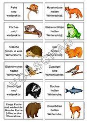 Tiere Im Winter Werkstatt Uberwinterung Mit Bildern Geschichten Fur Kinder Wald Grundschule Winterschlaf Tiere