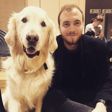 dogsofinstagram Pet a guide dog at the uni...