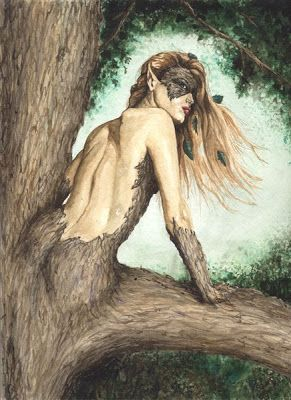 Hamadriad, a supernatural creature that live in trees in Greek mythology. (Special class of nymphs)