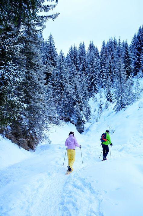 Raquettes à neige dans la forêt des Gets. (A.Gamito)