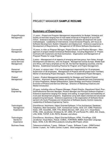 Professional Summary Resume Examples Summary Of Resume Examples - examples of summary for resume