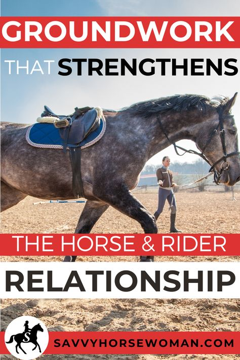 A guest post by Reese of Horses of the Ozark Hills. There he is right across from you, your horse. His feet beat the ground in a rhythmic pulse, his nostrils flare with his deep… Free Horses, Horses And Dogs, Show Horses, Horse Riding Tips, My Horse, Horse Love, Trail Riding, Horse Behavior, Horse Exercises