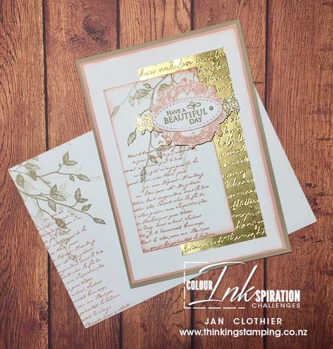 Photo of stampin up 2020 catalog