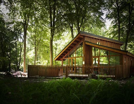 30 Forest Of Dean Ideas Forest Of Dean Forest Gloucestershire