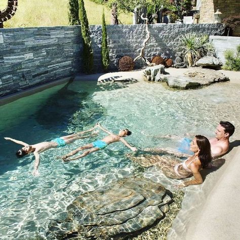 Small Backyard Pools, Backyard Pool Designs, Swimming Pools Backyard, Swimming Pool Designs, Pool Landscaping, Backyard Beach, Backyard Ideas, Living Pool, Natural Swimming Ponds
