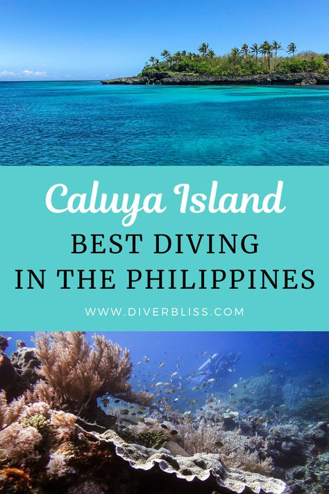 Caluya Island in Antique, Philippines is one of the hidden gems of this Visayas. Just a few hours away from the famous Boracay, this island has its share of beautiful beaches sans the tourists! Caluya Island Divers is the only dive operator in the island and only those who dare travel to this remote island gets rewarded with one of the most beautiful and untouched dive sites in the Philippines. #scubadiving #travelguide #Philippines #diving #caluya #offthebeatenpath #solotravel #bestdivesites