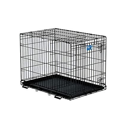Midwest Homes For Pets Life Stages Single Door Folding Metal Dog Crate Black 36 X 24 X 27 Inch Check Out Th In 2020 Dog Crate Wire Dog Crates Folding Dog Crate