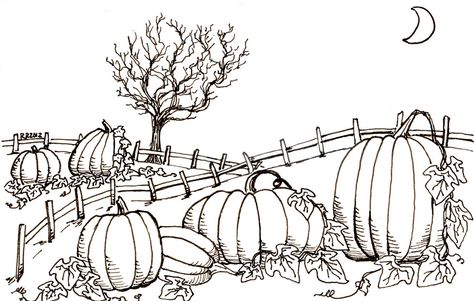 Halloween Pumpkin Patch Coloring Pages Halloweencoloringpages