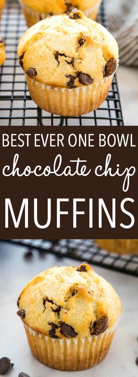These Best Ever Chocolate Chip Muffins are the perfect easy-to-make sweet treat. Moist, tender muffins packed with chocolate chips! Recipe from thebusybaker.ca! #chocolatechipmuffins #homemade #muffins #baking #chocolate #chocolatechip #homesteading #bakingwithkids #snack #coffeebreak #recipe #muffinrecip via @busybakerblog