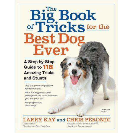 Big Book Of Tricks For The Best Dog Ever Paperback Dog