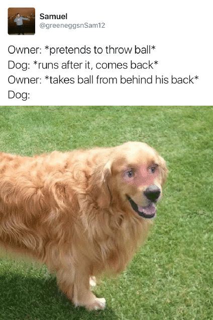 27 Great Pics And Memes to Improve Your Mood