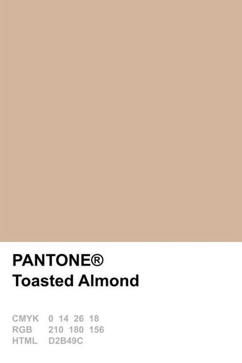 Pantone shade Toasted Almond - a great neutral - My MartoKizza