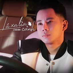 La Xa Lia Canh Le Bảo Binh Bai Hat Lyrics Bảo Binh Bai Hat Le