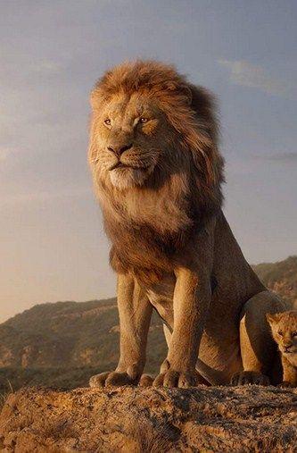 Az Oroszlankiraly 2019 Teljes Film Magyarul Online Lion Lion