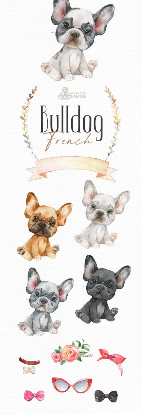 French Bulldog. Watercolor little animal clipart, Frenchies, portrait, puppy, doggie, baby, flowers,