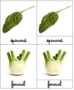 Activité autour des légumes d'automne (cartes de nomenclatures)