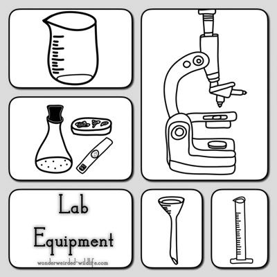science beakers and lab equipment Royalty Free Vector Clip Art ...