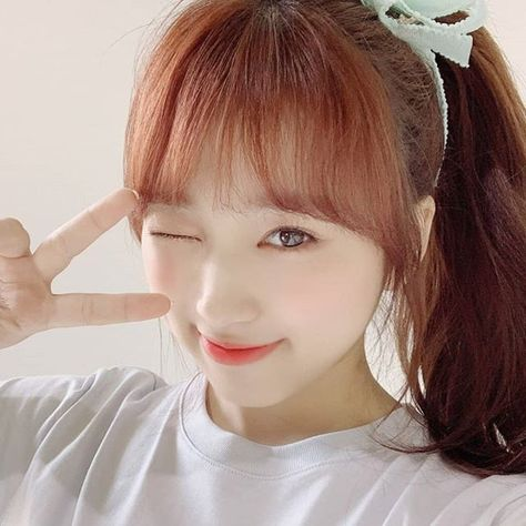 List of pd48 pictures and pd48 ideas