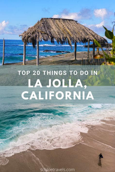 The Top 20 Things to do in La Jolla, California!