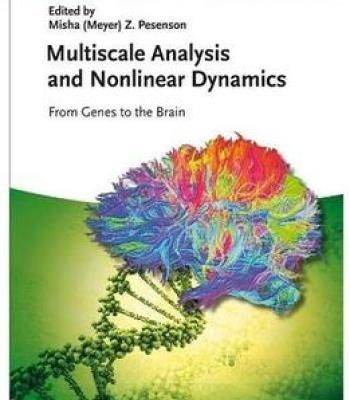 Multiscale Analysis And Nonlinear Dynamics Pdf Brain Book Buch Analysis