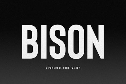 Bison Bold Free Demo Font | Free Fonts | Bold fonts, Free