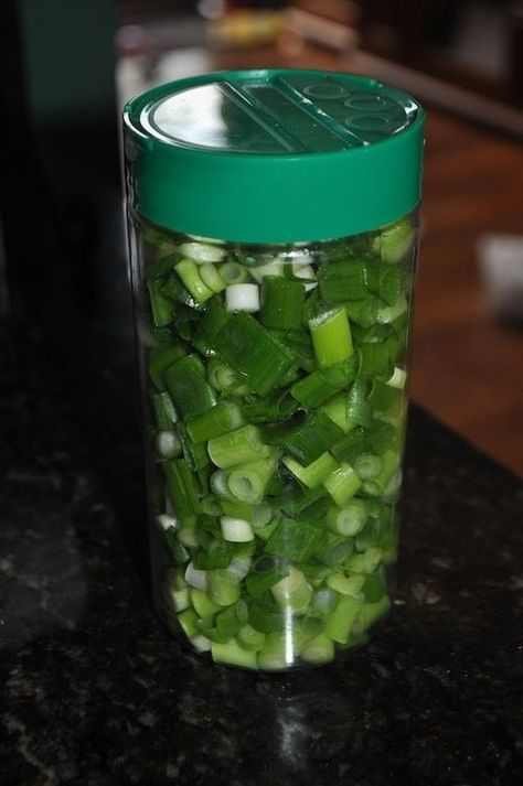 What a great way to keep those green onions around longer.I know I end up at least once in a while with a bag of soggy, slimy green onions in the bottom of the crisper. Im going to try this! JUST CLICK Shop and save! Plastik Box, Pot Mason, Preserving Food, Green Onions, Baking Tips, Freezer Meals, Freezer Recipes, Freezer Cooking, Fruits And Veggies