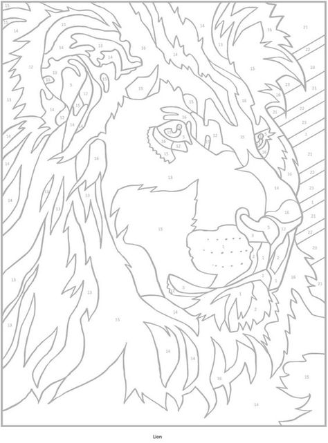Welcome To Dover Publications Creative Haven Wild Animals Paint By Number Animal Tier An With Images Adult Coloring Designs Color By Number Printable Animal Coloring Books