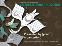 Bird theme > Lots of free printable materials, crafts, PowerPoint presentations and more at Birdday . org.