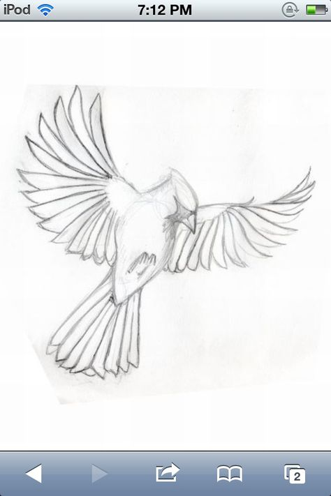 Want it this to be my first tattoo. My grandma loved cardinals and I love her.
